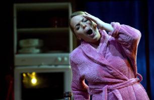 Den Fynske Opera, 24/11 2011